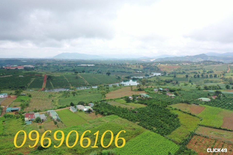 E738F949-7335-4A2A-840A-53B041126F8D.jpeg